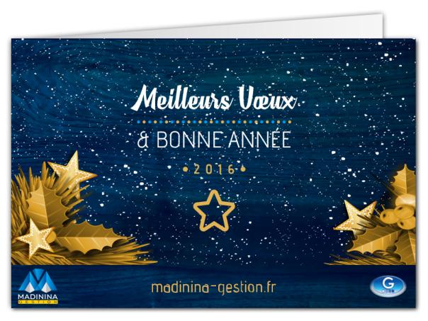 mgestion-carte-de-voeux-2016